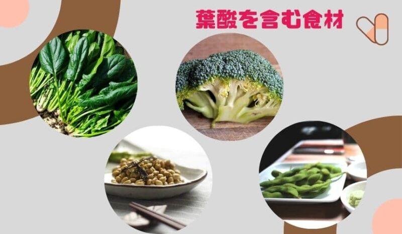 葉酸を含む食材はたくさんある